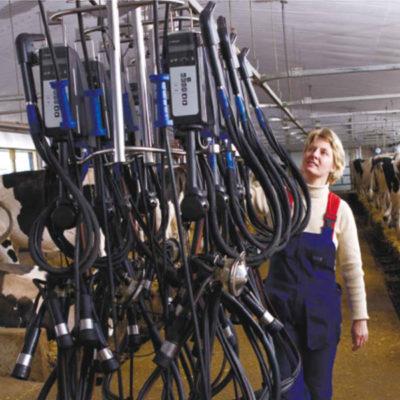ЛДУ с программой управления стадом
