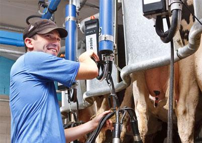 Сервис оборудования животноводческих ферм