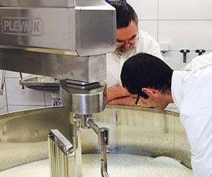 оборудование для переработки молока Plevnik