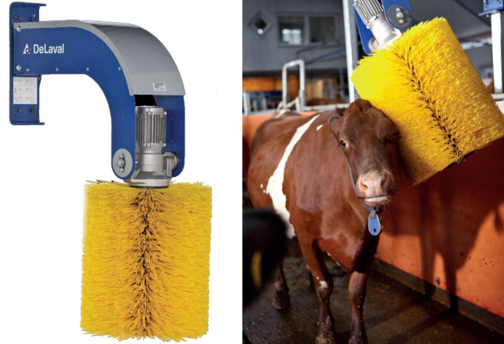 Щетки для коров