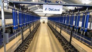 Молочно-товарный комплекс по производству и переработке козьего молока ООО «Мирный-Адыгея» открылся в поселке Трехречный Майкопского района.